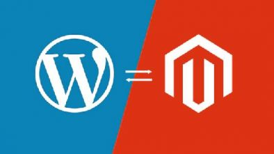 Logo of Wordpress and Magento in Blue and Red Background